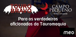 Madrid - Feria de Rejones (MEO-Tourobravo)