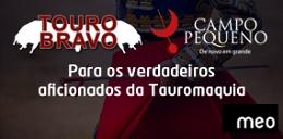 Mardid - Feria de Beneficiencia (MEO-Tourobravo)