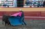 Treino de Fim de Época do Grupo Juvenil da Tertúlia Tauromáquica Terceirense na Praça de Toiros da Ilha Terceira
