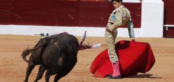 Juanito sem hipóteses no seu debute com picadores em Olivença