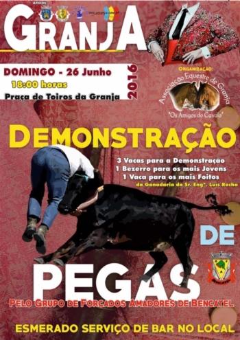 Dia  26 de junho há demonstração de pegas na Granja