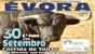 Peso e imagens dos toiros para hoje em Évora