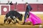 As imagens do Festival do Sobral de Monte Agraço