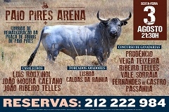 Paio Pires Arena