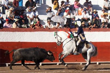 México - Moura Jr corta orelha em Mérida