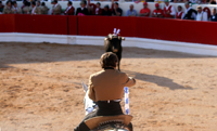 Festival  Taurino em Alcochete