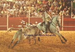 Cavaleiro Marcelo Mendes no