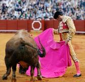 O Matador Enrique Ponce na Campanha do México