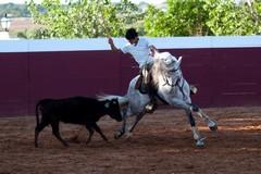 Pedro Salvador prepara-se para a Terrugem