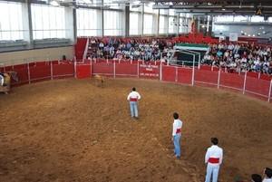 Portugueses marcam presença da Ecuextre em Badajoz
