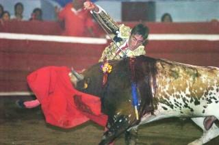 David Gil, o toureiro dos Andes...