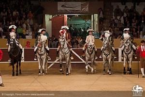 No Concurso de Ganadarias de Arruda, Triunfo para António Telles e Troféus para Pinto