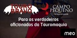 Zaragoza - Feria del pilar (MEO-Tourobravo)