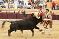Imagens da corrida de Salvaterra de Magos, 13 Maio de 2012
