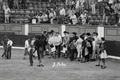 Imagens da novilhada sem picadores em Badajoz