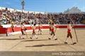 Imagens do XXX Concurso de Ganadarias Associadas em Alcochete