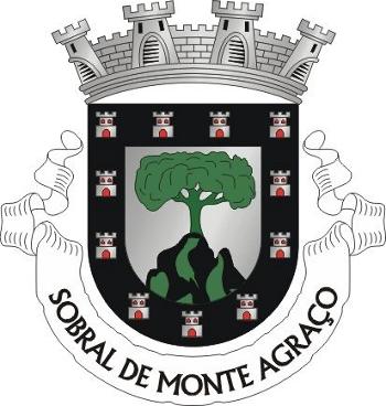 Corrida de Toiros e novilhada (variedades taurinas), nas festas de verão do Sobral de Monte Agraço