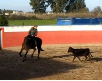 Vídeo do primeiro treino de Ana Batista em 2013