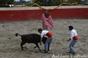 Ilha Terceira comemora Dia da Criança na Quinta da Malhadinha