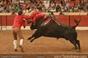 Imagens da corrida de Setubal