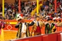Corrida de inauguração da temporada na Nazaré