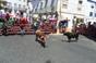Imagens dos Festejos Populares em Coruche