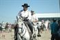 Imagens do V Passeio Equestre de Vila Nova de S. Bento