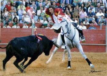 Última hora: corrida de S. Romão da Ucha - Barcelos - interrompida ao terceiro toiro