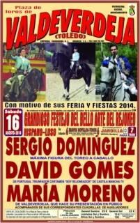 Os Próximos festejos de David Gomes