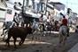 Festejos populares taurinos de Vila Franca de Xira