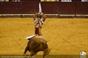 As imagens da corrida do Campo Pequeno - Ventura vs El Juli