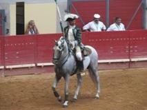 Saiba quando apareceu o Toureio a Cavalo