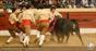 As imagens da corrida de Setúbal na Praça