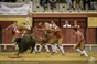 As imagens da corrida mista em Vila Franca