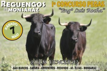 Imagens de algumas reses para o I Concurso de pegas - Eng.º Luís Rocha