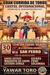 Cartel Internacional no Peru